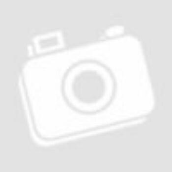 Állítható magasságú WC magasító felhajtható karfával, fedéllel (TSE150)